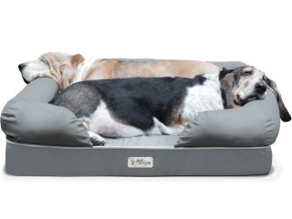 Top 3 Best Dog Beds 2020 Review