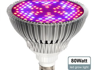 Top 3 Best Plant Growing Lamps 2020 Review
