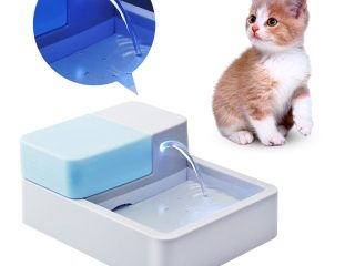 Top 3 Best Water Fountains For Pet 2020 Review