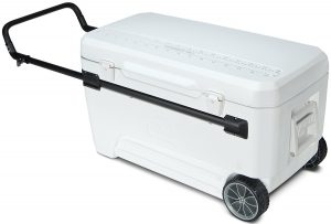 Best Hard Cooler