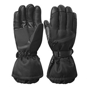 REDESS Men's Waterproof Winter Warm 3M Thinsulate Windproof Ski Gloves