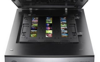 Top 10 Best Flatbed Scanners in 2020 Review
