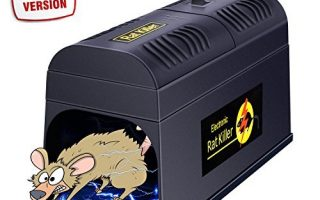 Top 10 Best Mouse Trap 2020 Review