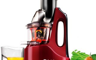 Top 10 Best Cold Press Juicer 2020 Review