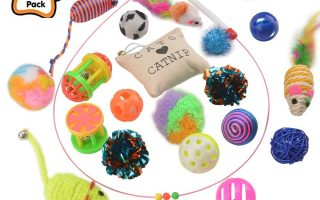 Top 10 Best Cat Toys For Cat In 2020 Review