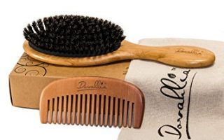Top 10 Best Hair Brush in 2020 Review