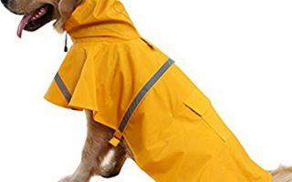 Top 10 Best Dog Raincoats 2020 Review
