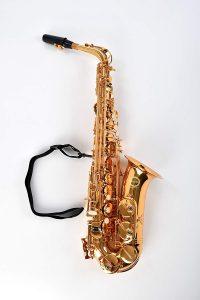 Herche Herche Superior Alto Saxophone