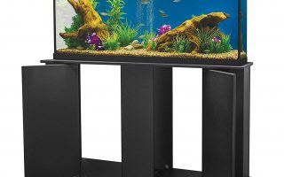 Top 5 best 75 gallon reptile tanks for sale in 2020 review
