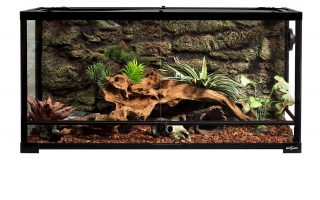 Top 5 best large snake terrarium in 2020 review