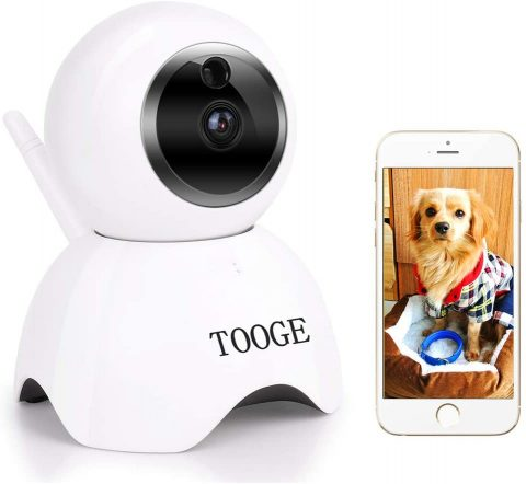 Pet Dog Camera Wireless